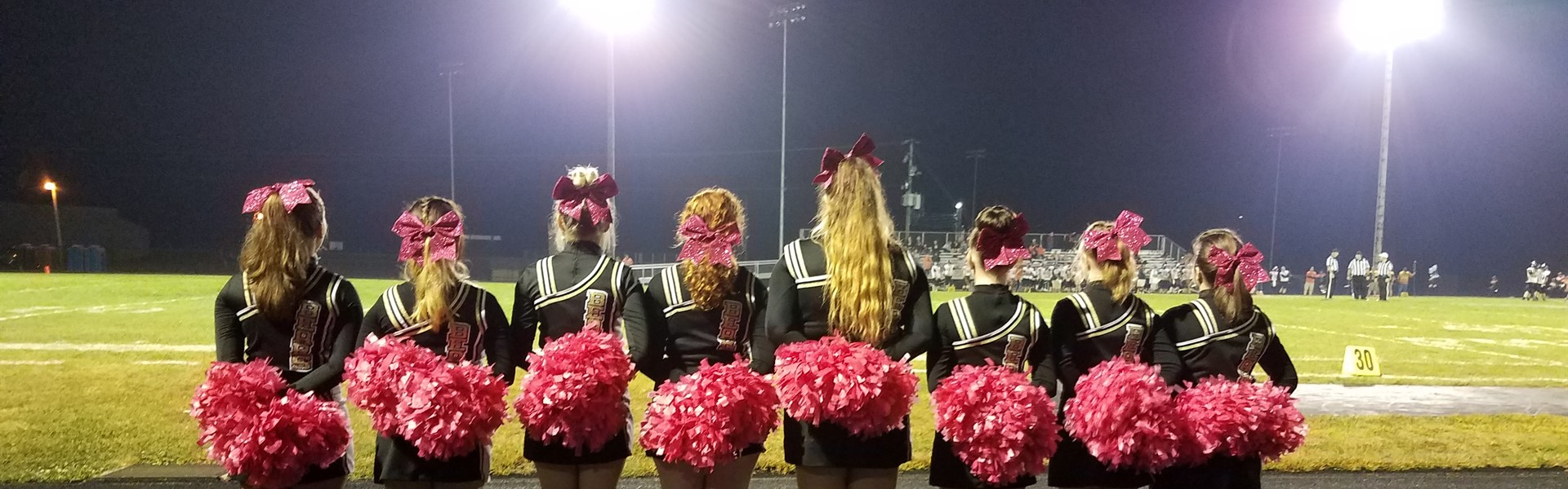 Bears and Breast Cancer Awareness